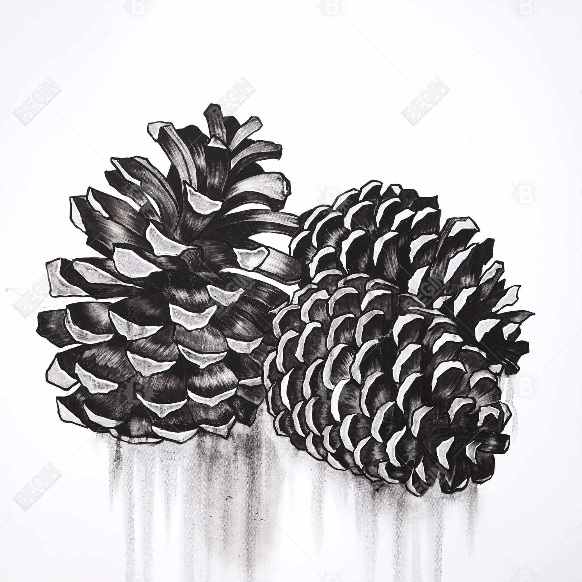 Three small pine cones