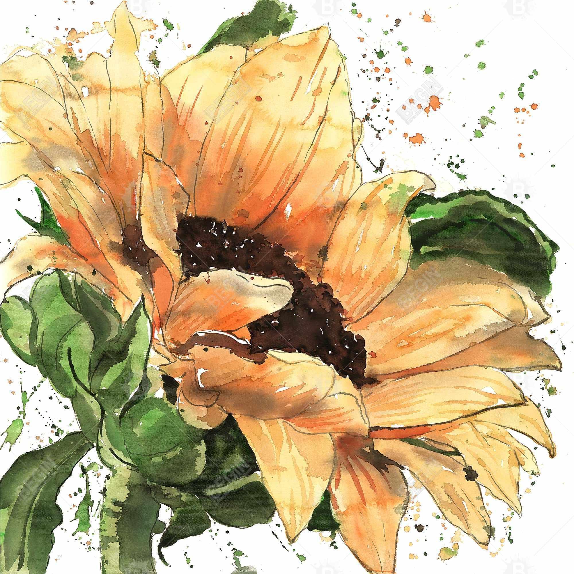 Tournesol en fleuraison