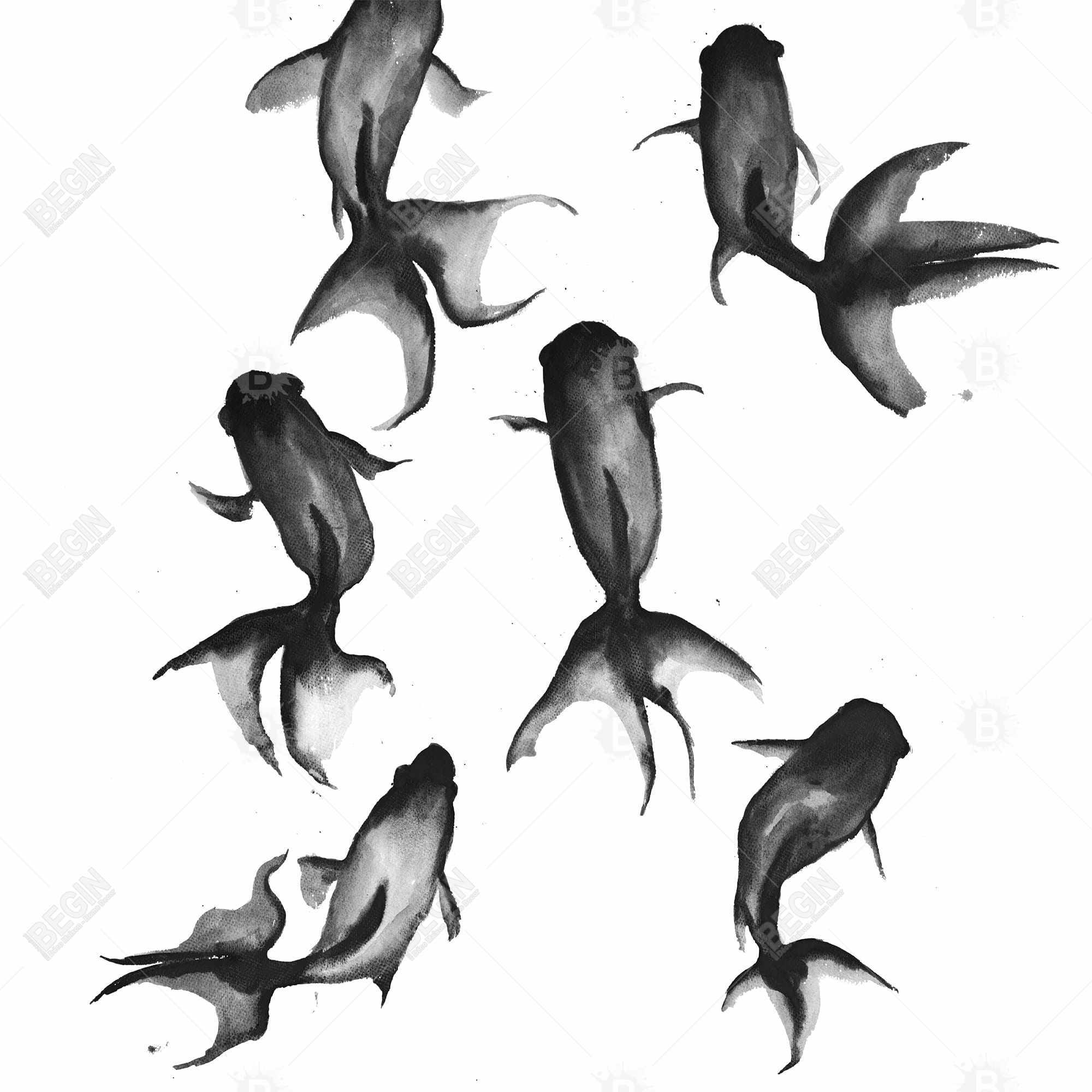 Black fishes