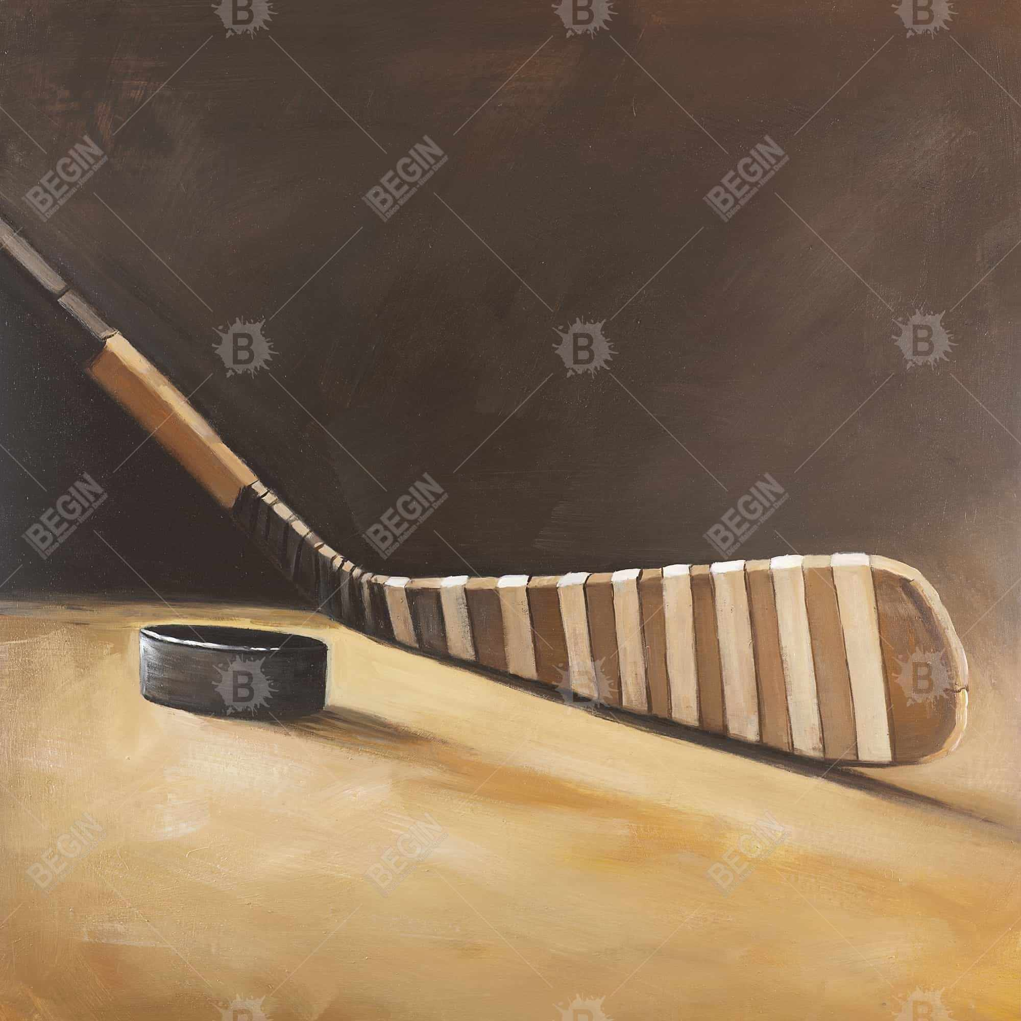 Stick and hockey puck