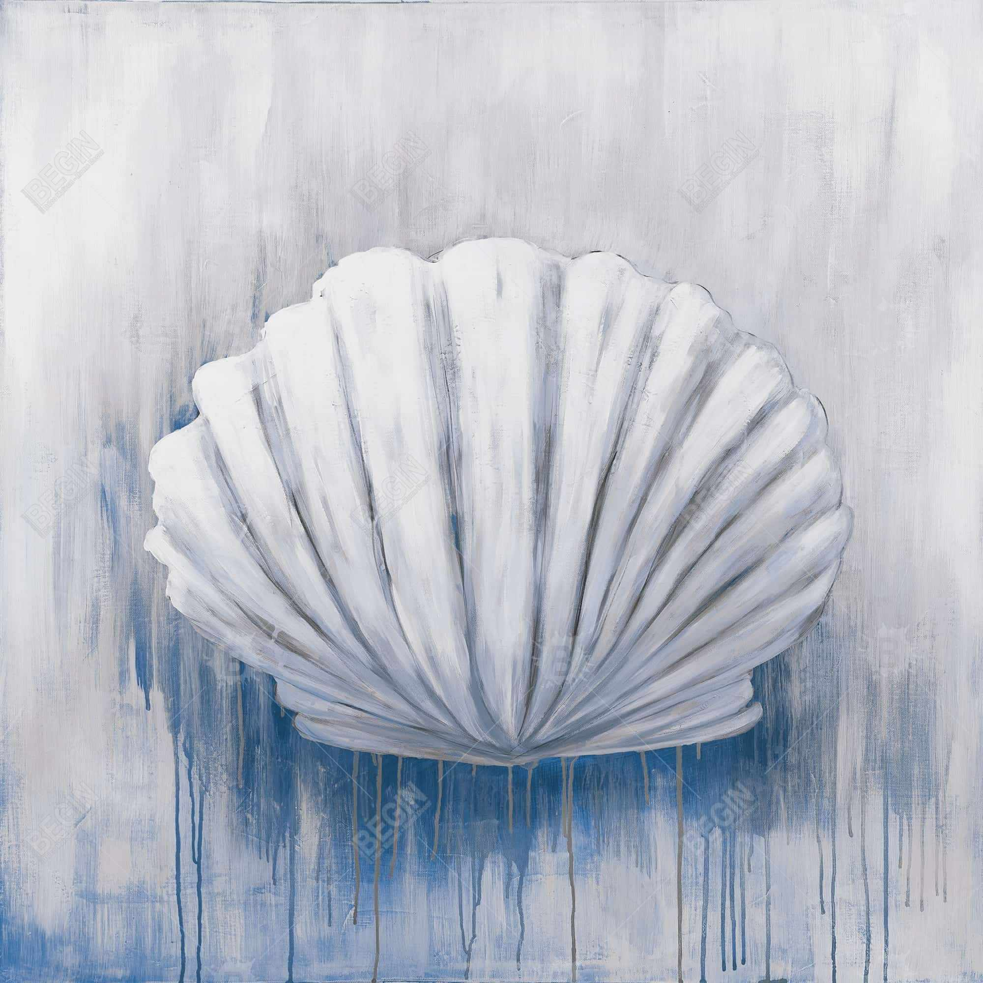 Blue feston shell