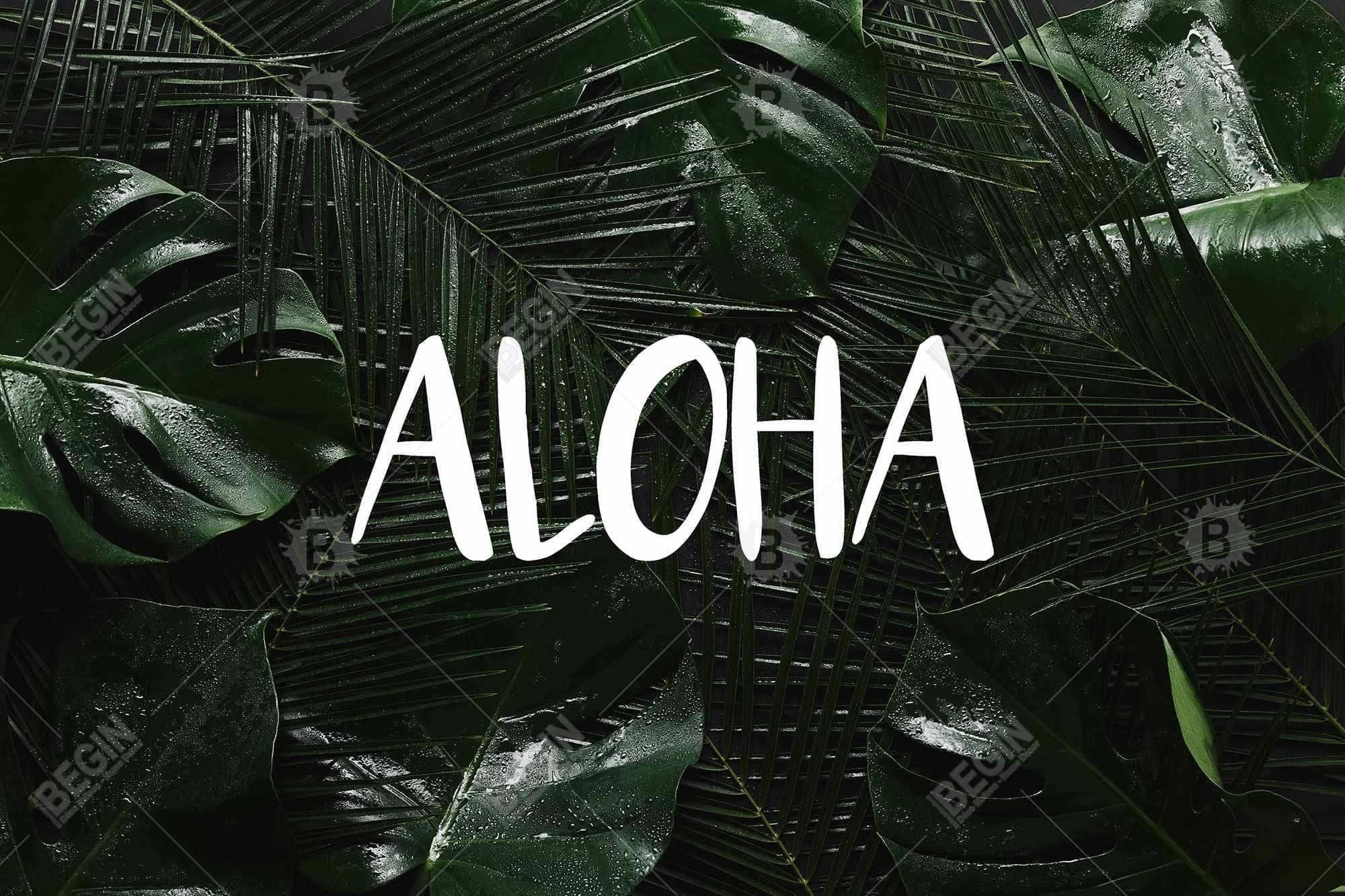 Tropical aloha