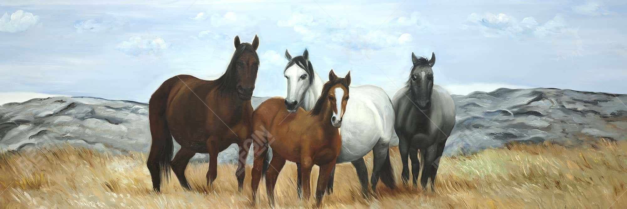 Horses in the meadow by the sun