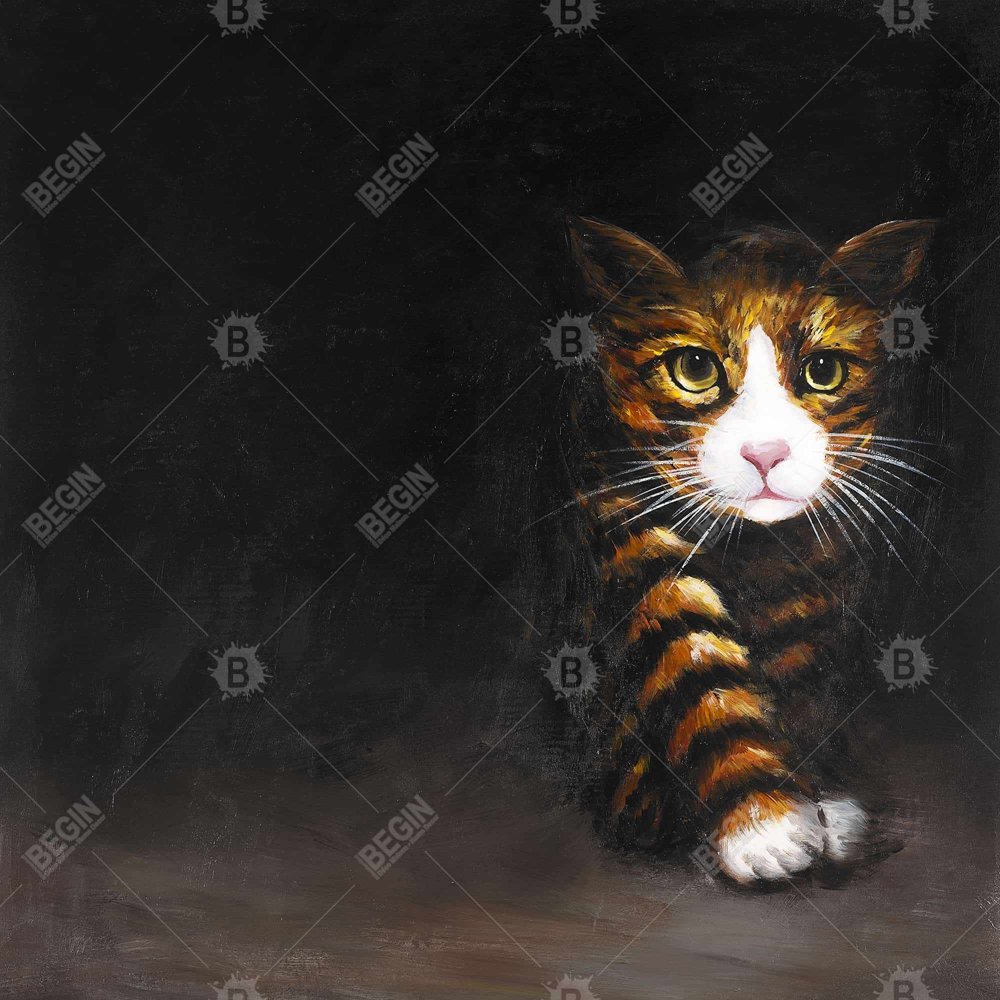Discreet cat